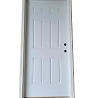6-panel steel house door